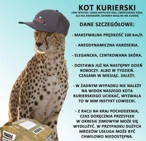 kotkurierski